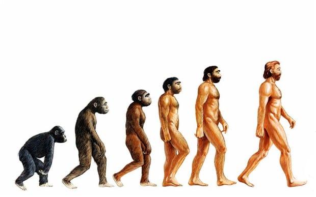 Evolution Vocabulary - New York Apologetics