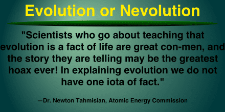 Ne:Evolution