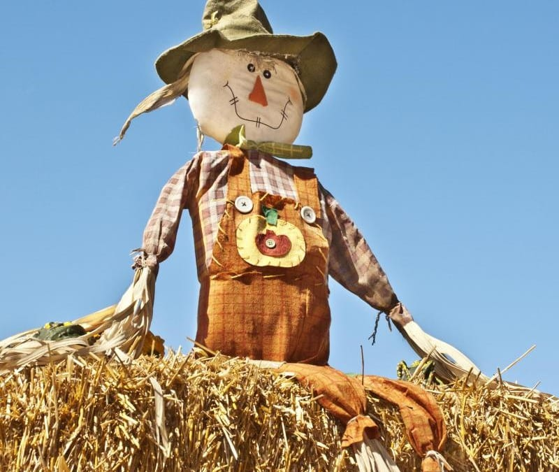 How to Engage a Straw Man