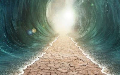 6 Reasons for Rejecting the Miraculous